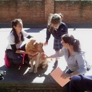 Intervenciones asistidas con animales