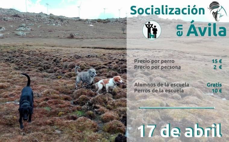2016-04-24_Socializacion_Avila