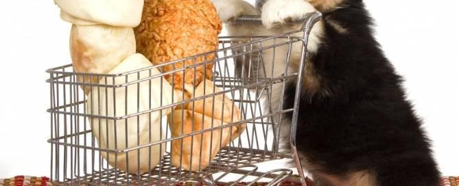 Ladron de comida