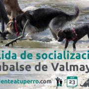 Salida de socialización en Valmayor