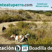 2017-11-26_ salida de socialización canina