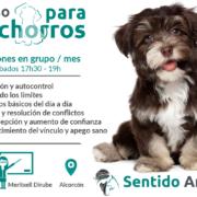 Curso para Cachorros