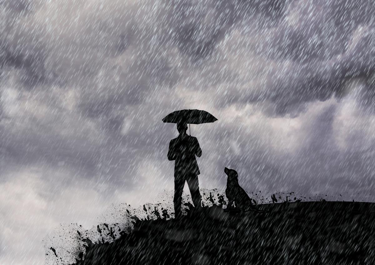 Llueve, ¿qué hacemos con el perro?