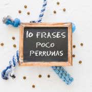 10frases-poco-perrunas