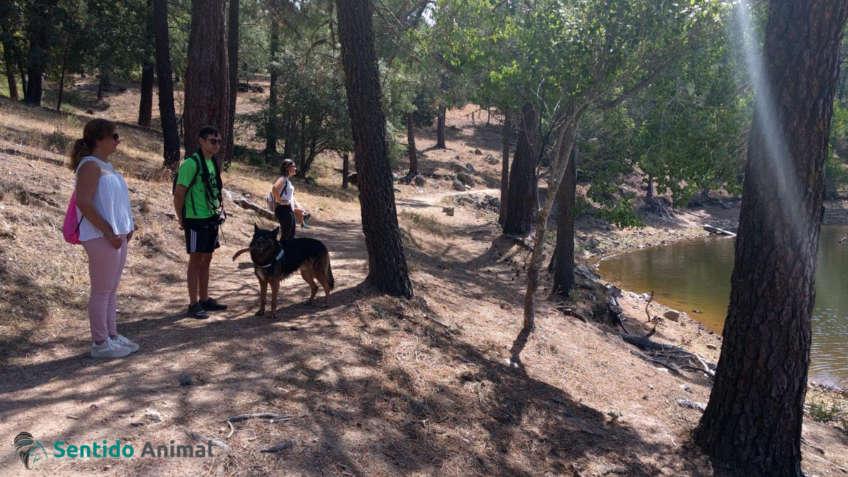 Salida de senderismo con perros