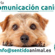 Comunicacion canina